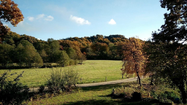 Efterårs-natur
